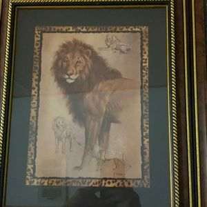 Two lion print pictures